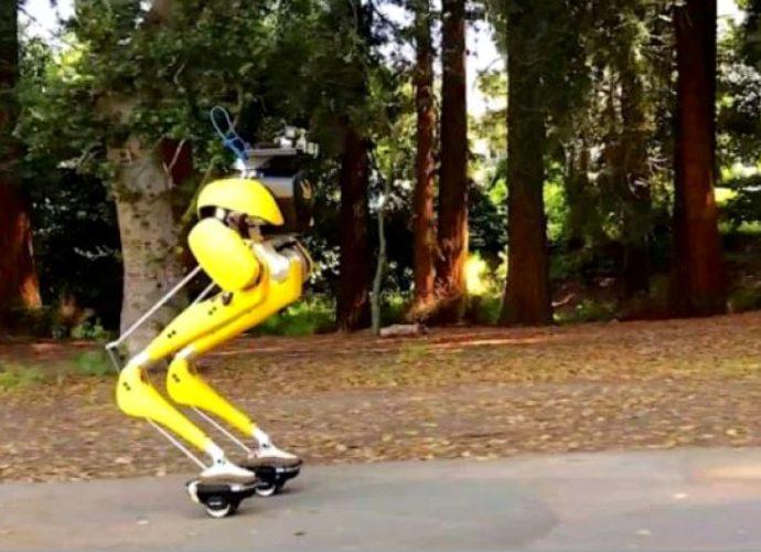 Robotul Cassie a invatat sa mearga pe role